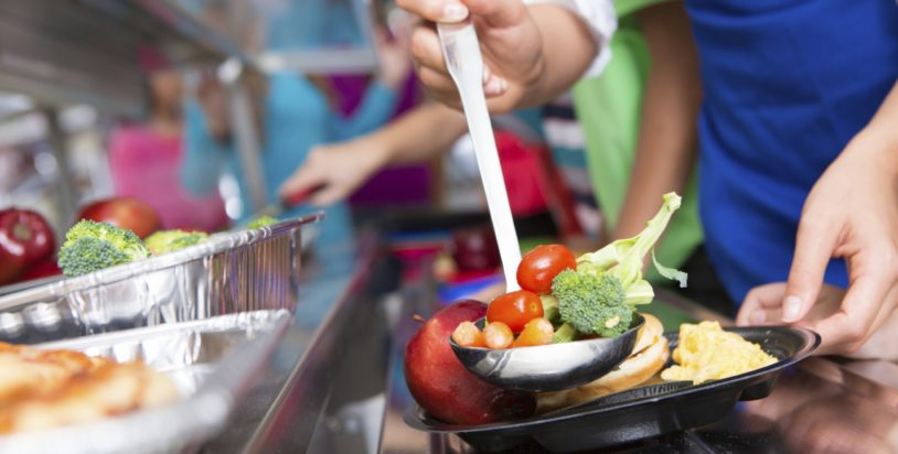 Area School Lunch Programs During COVID 19