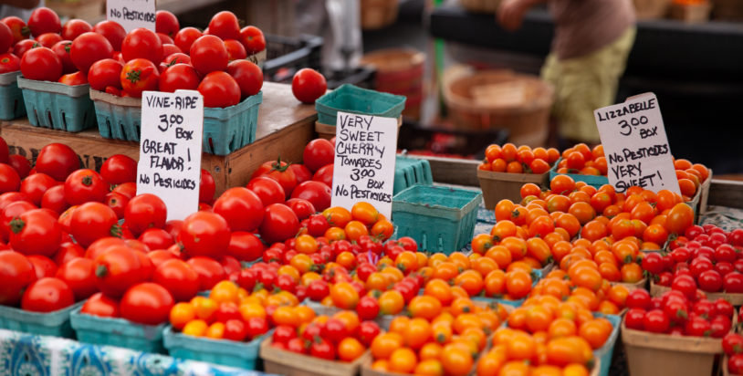 Create Your Own Northern Michigan Farmers Market Scavenger Hunt
